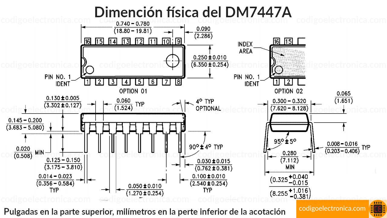 Pines 7447